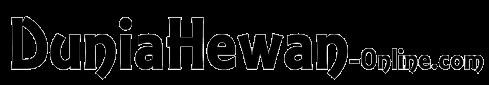Web Design Surabaya